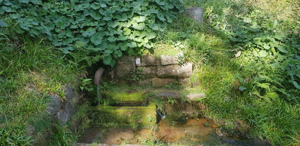 Die Harzbrunnen Quelle ist ein Teil der Rother Wanderführer Wandertour