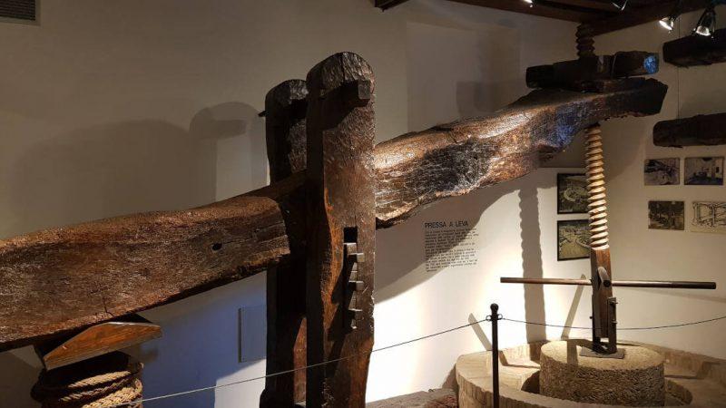 Olivenölmuseum Bardolino